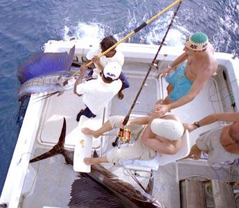 все о рыбах